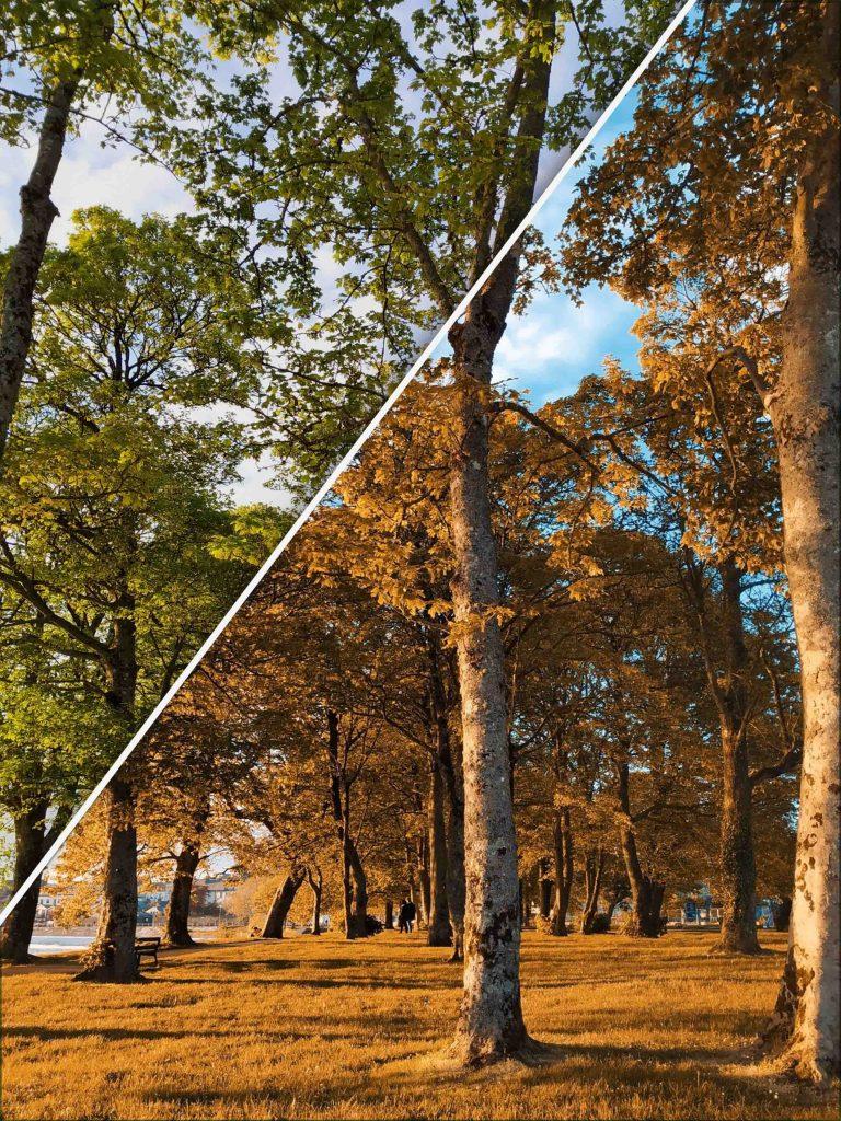 Antes y después efecto Orange Teal conseguido con la app Orange & Teal